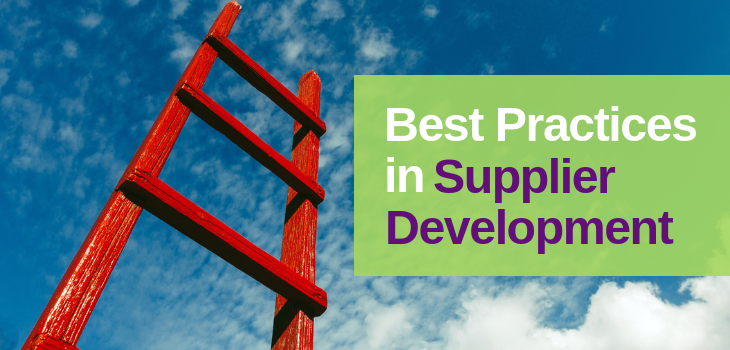 best_practices_supplier_development