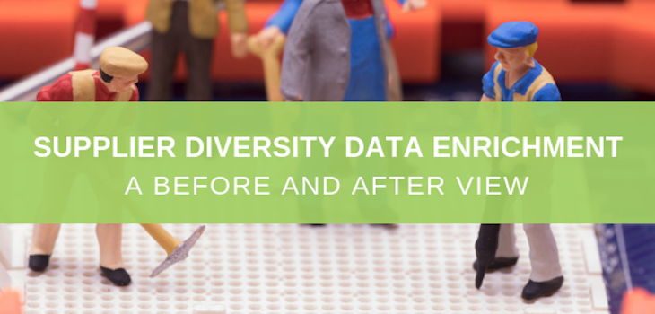 data enrichment for supplier diversity